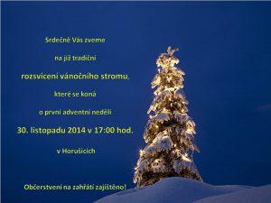 strom-2014-1